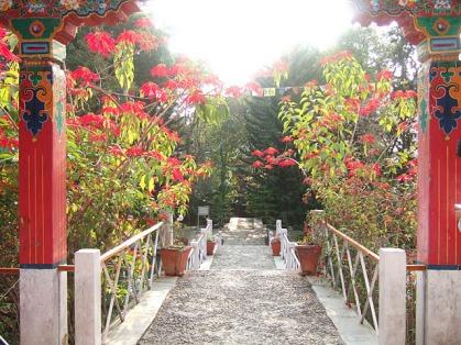 dharamsala-nov20-21-2011-207-2